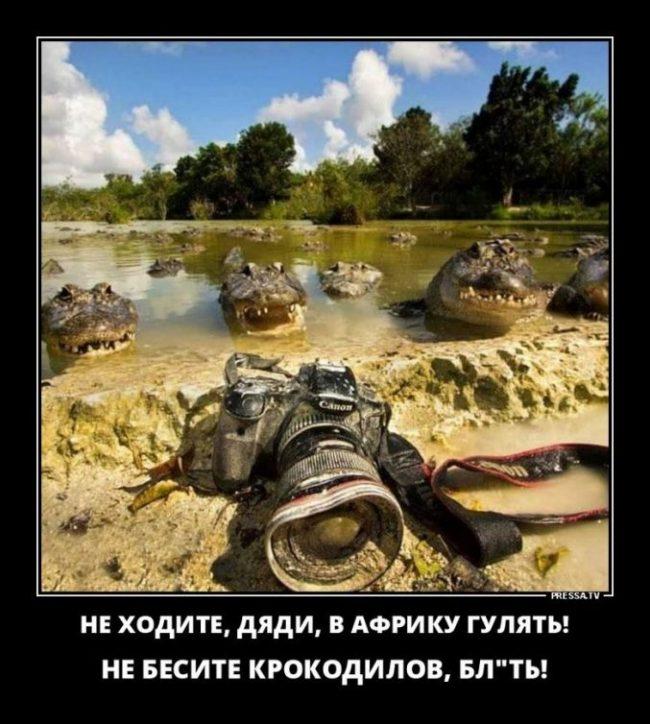 Демотиваторы смешные свежие 2019 (40 фото)
