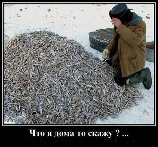 Прикольные картинки про рыбалку (60 фото)