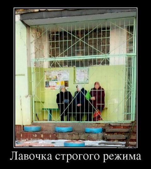 Демотиваторы 2019 (50 фото)