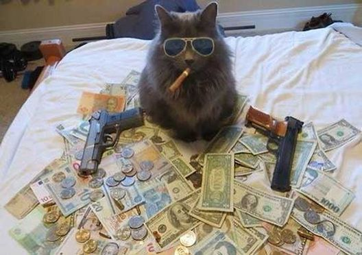 Прикольные картинки про деньги (60 фото)