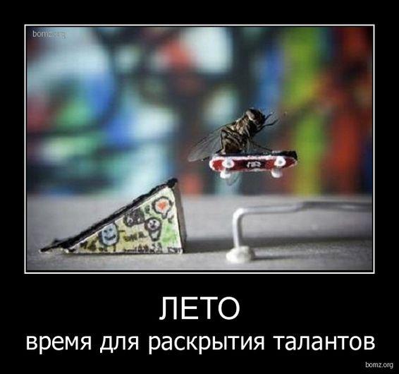 Демотиваторы лета (50 фото)