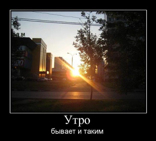 Демотиваторы утро (65 фото)