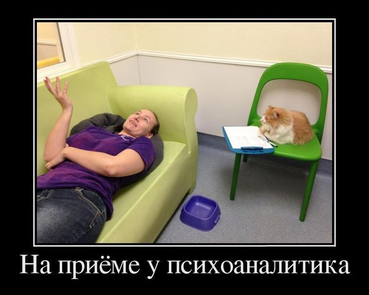 Фото приколы про психологов
