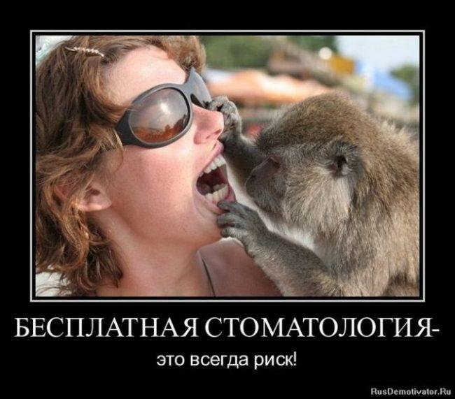 Прикольные, смешные картинки о больном зубе