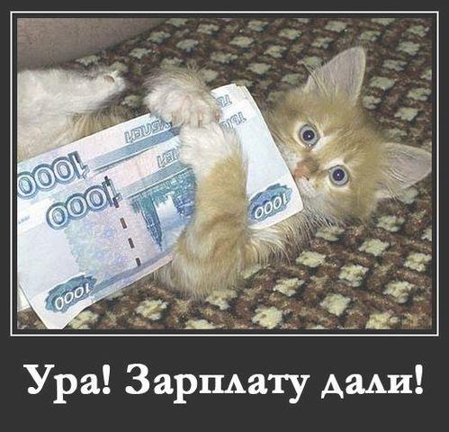 Морозные, прикольные картинки зарплату дали