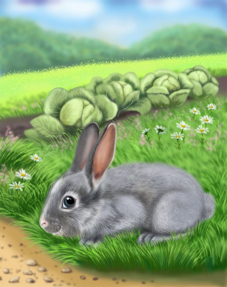Анимаций картинок, картинки с кроликом для детей