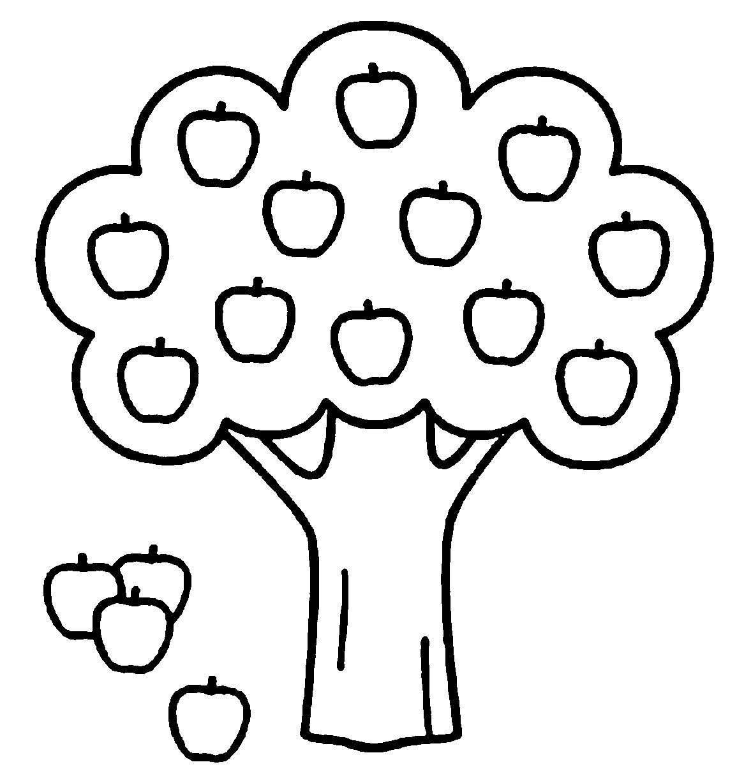 Яблоня черно белая картинка