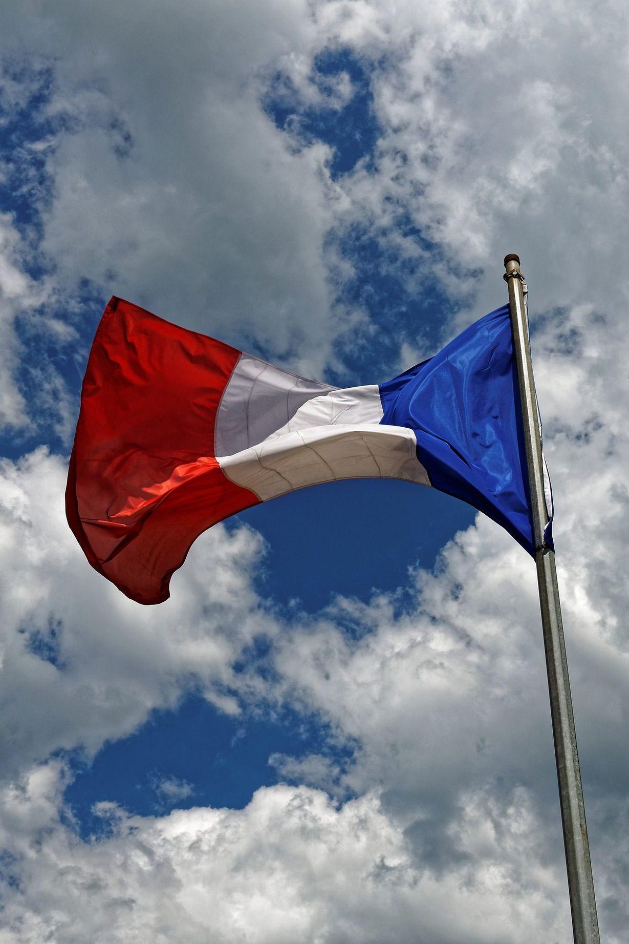 Картинки франц флага