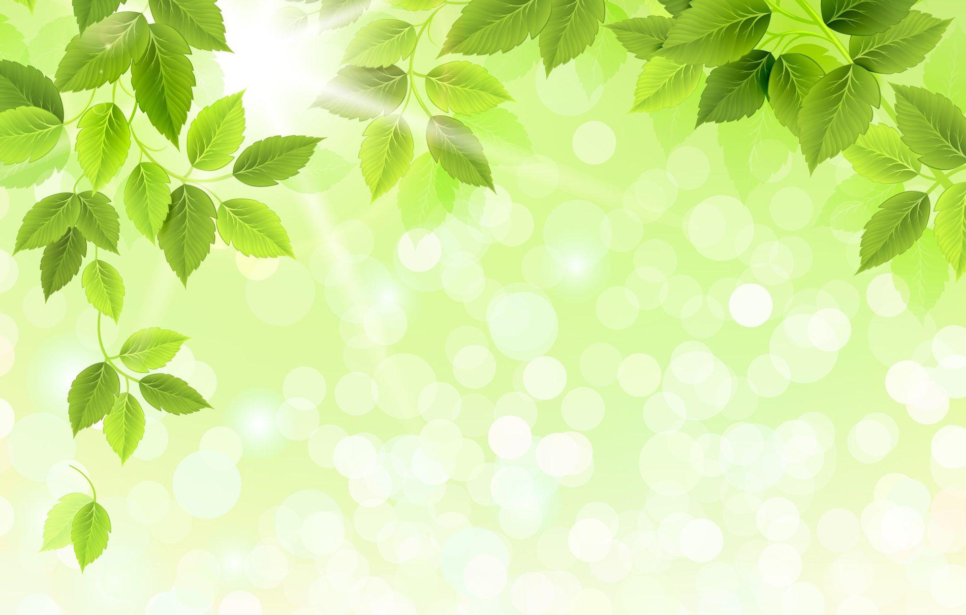 Про прикольные, картинки зеленый фон для презентации