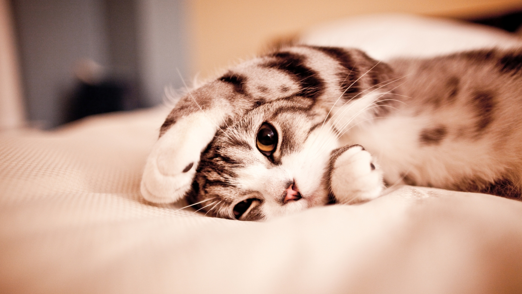 Доброе утро няшные картинки с животными
