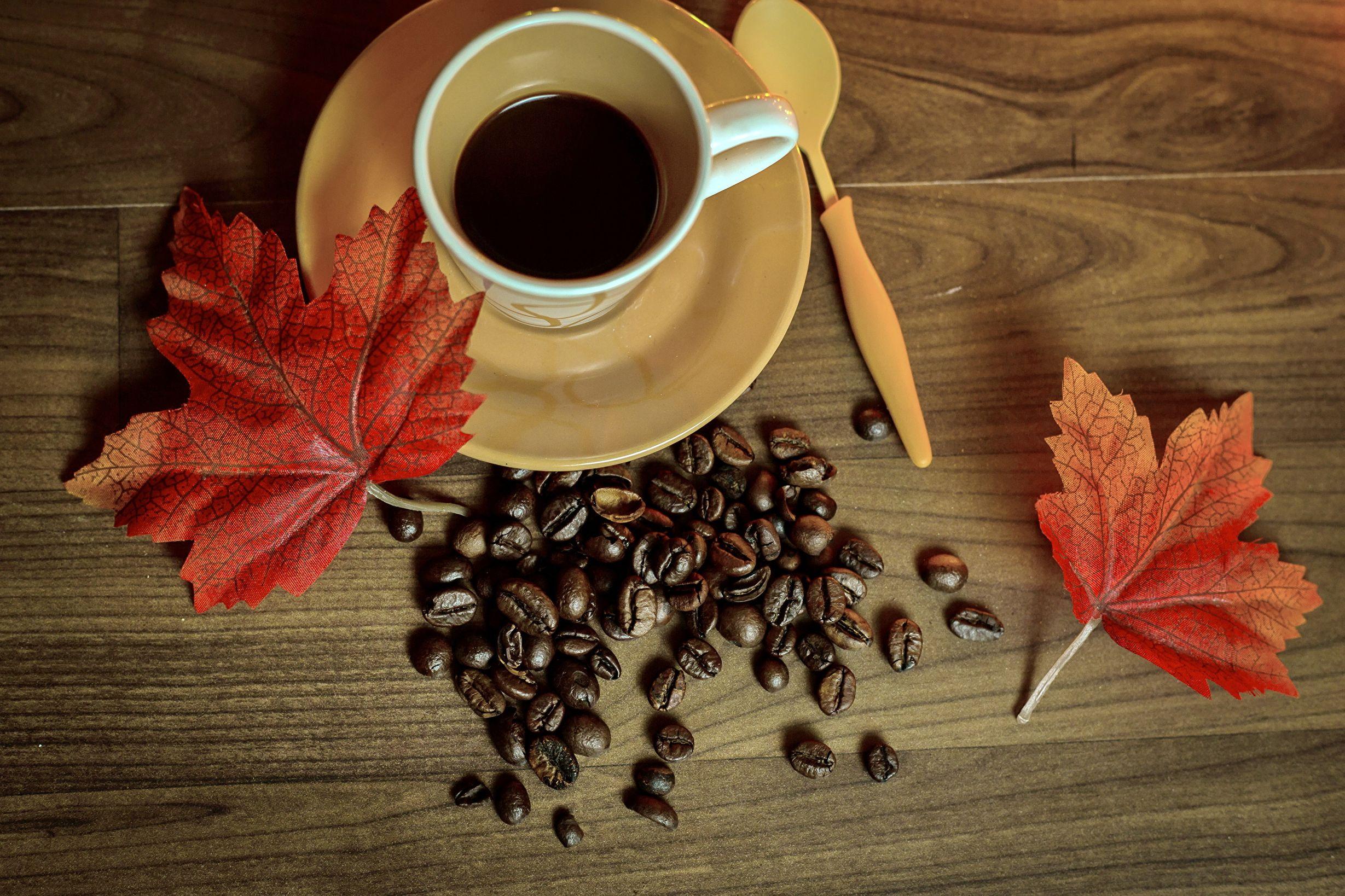 картинки на телефон кофе осенние листья