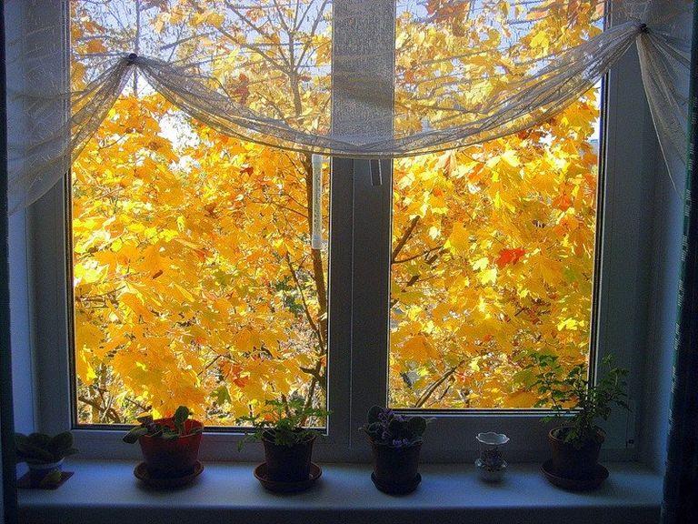 семи съёмочных картинки осень за окном штрих эйфелева башня