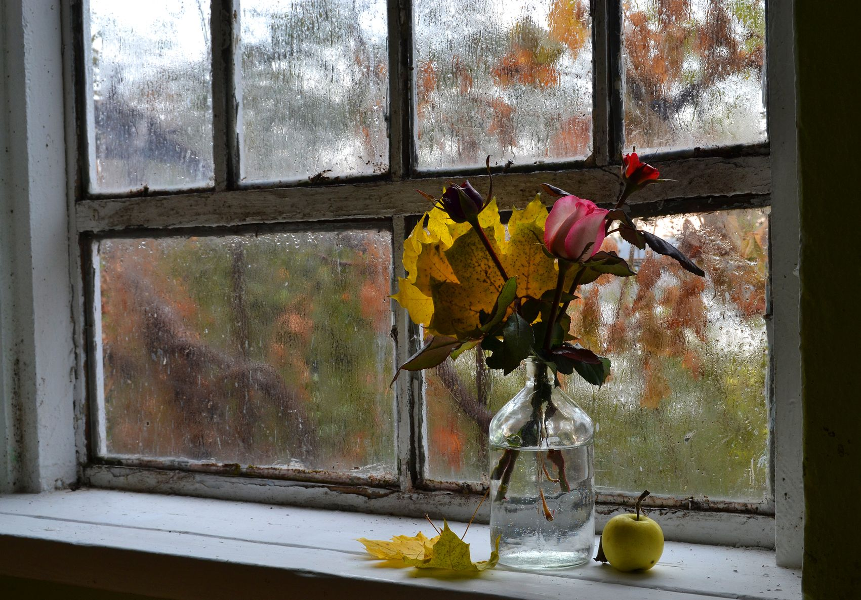 картинки осень за окном узнали