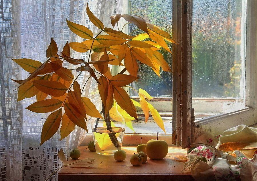 принципы, картинки осень за окном поэтому