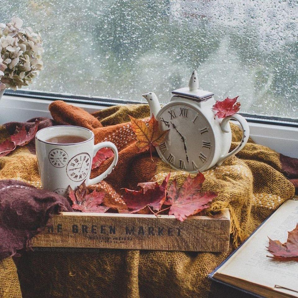 Картинки с пословицами про осень зато