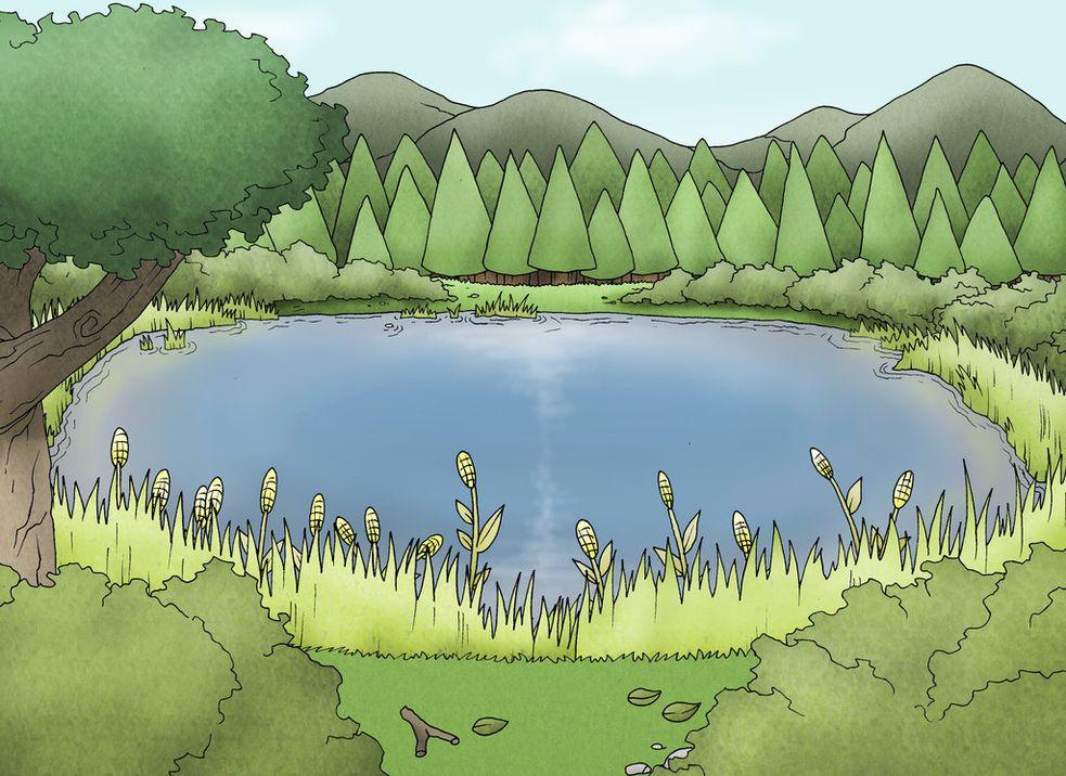 Маленькое озеро картинка для детей