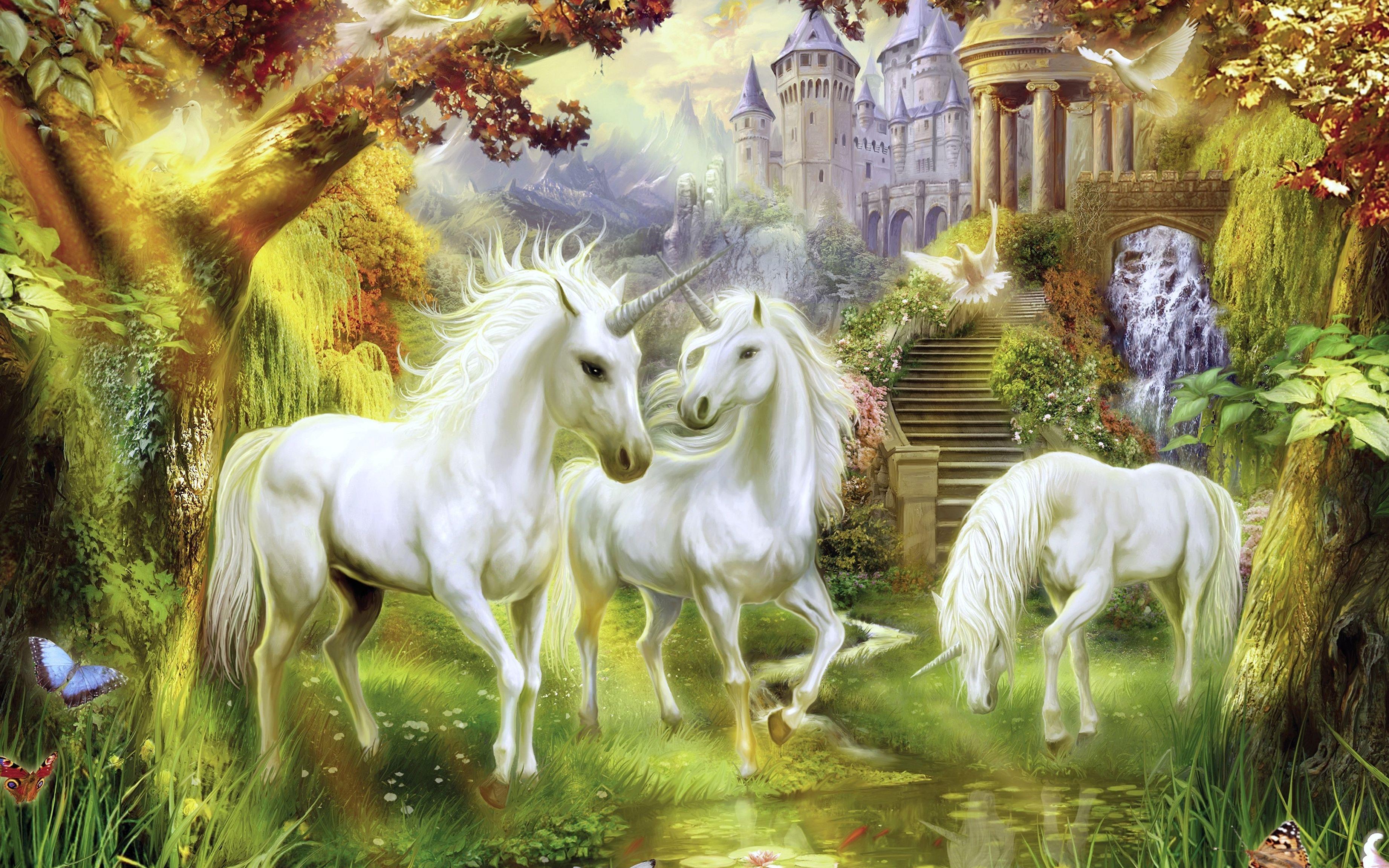 картинки с волшебными животными