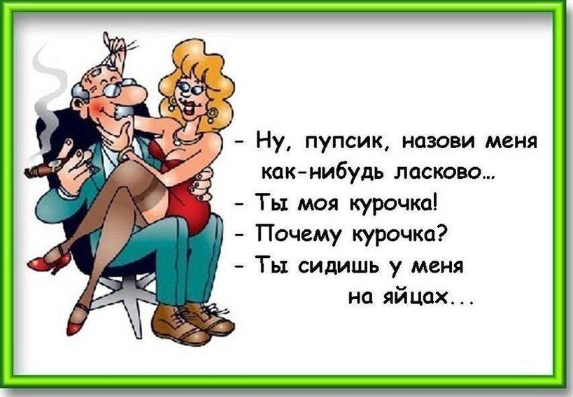 Анекдоты жена и муж смешные картинки, открытки картинки пожелания
