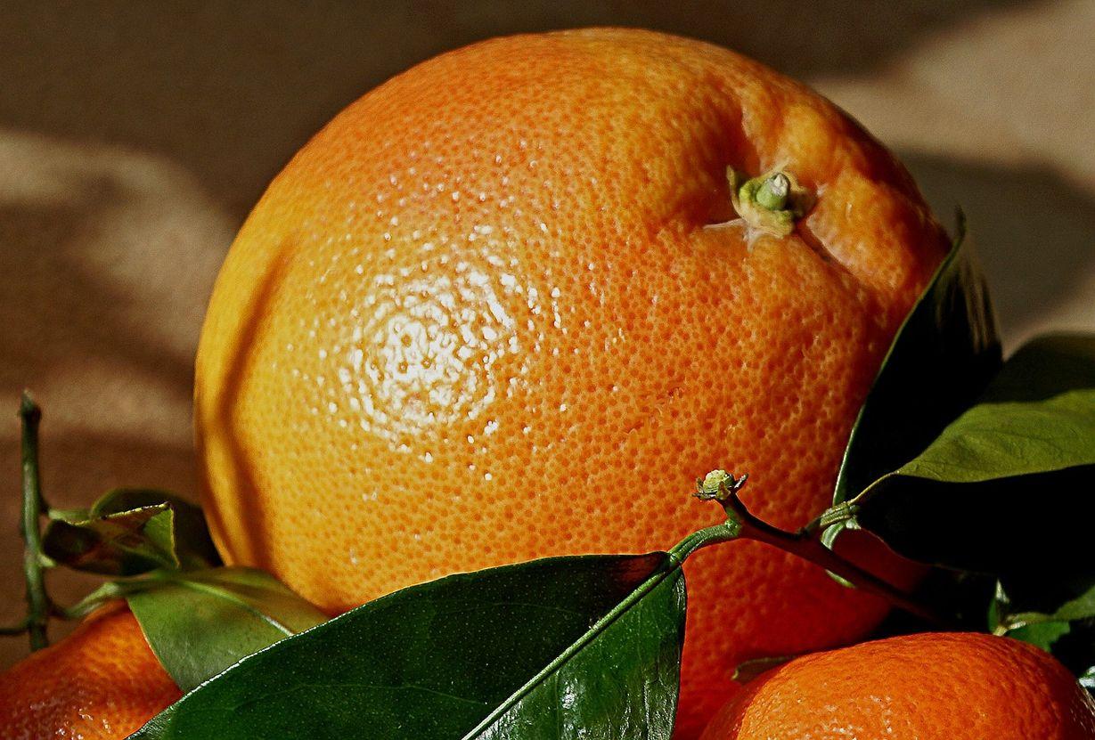 свежие апельсины картинки ржачный юмор