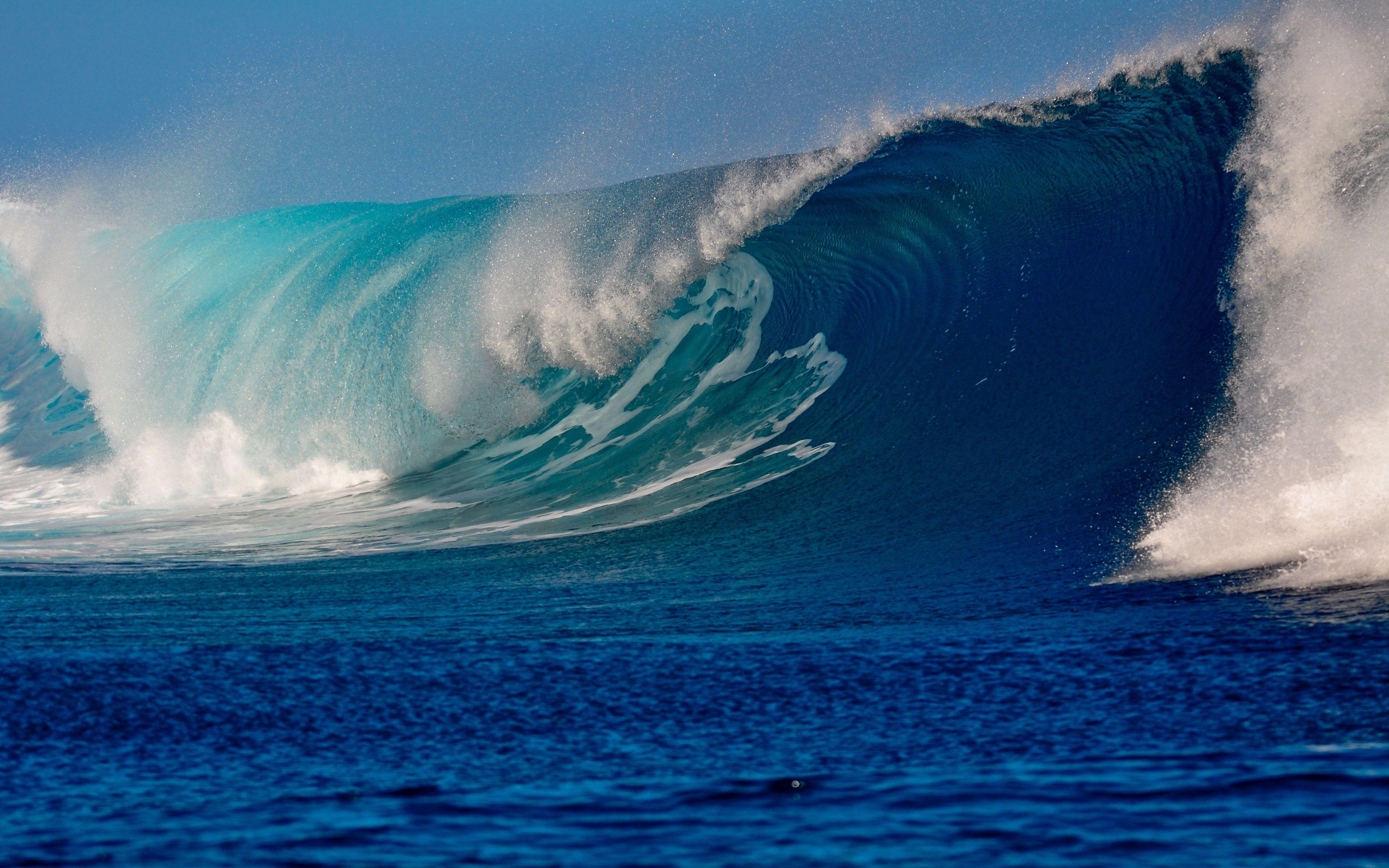 называют фото океанических волн полагая