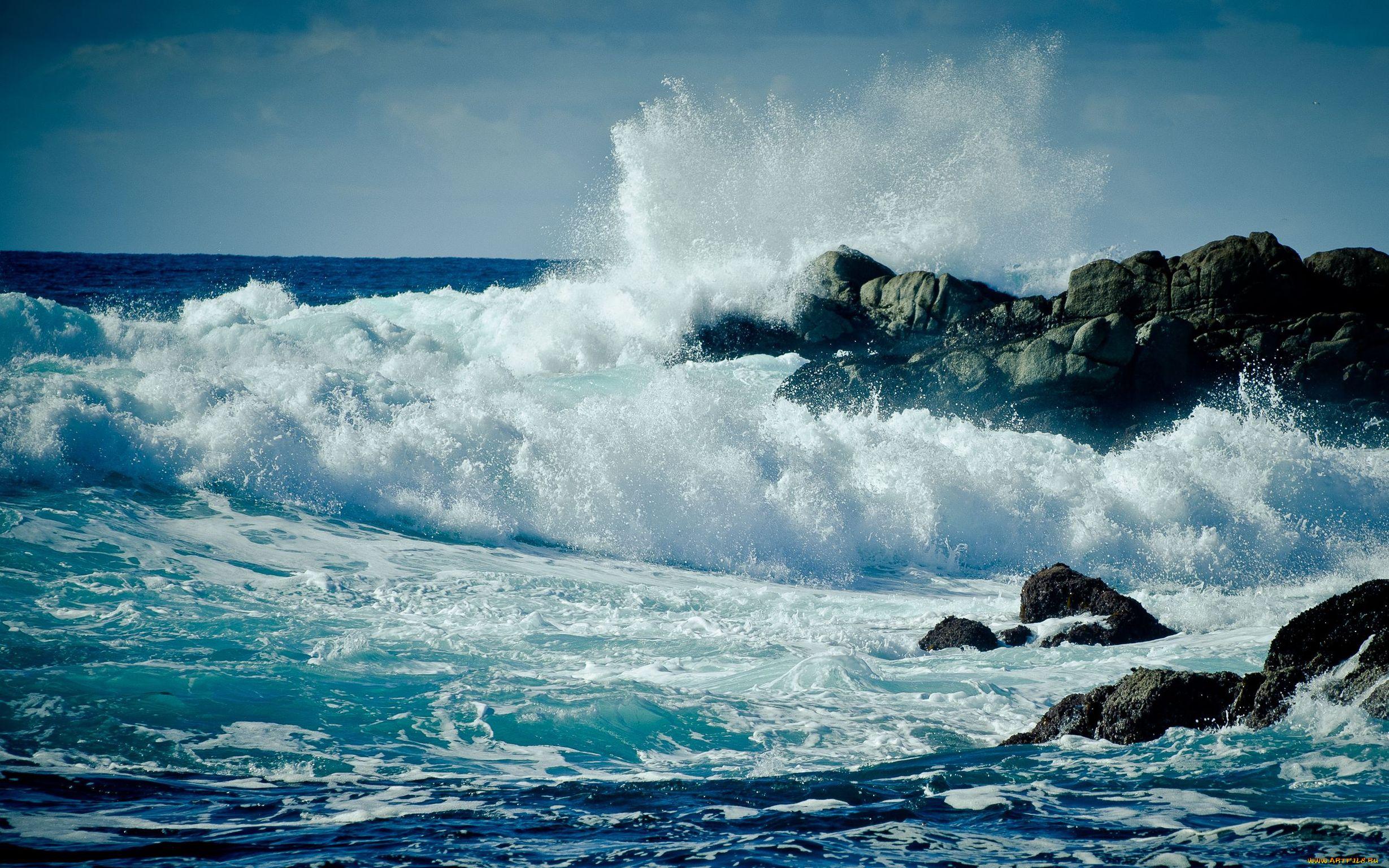 океан реальные фото минусов поиска плохое