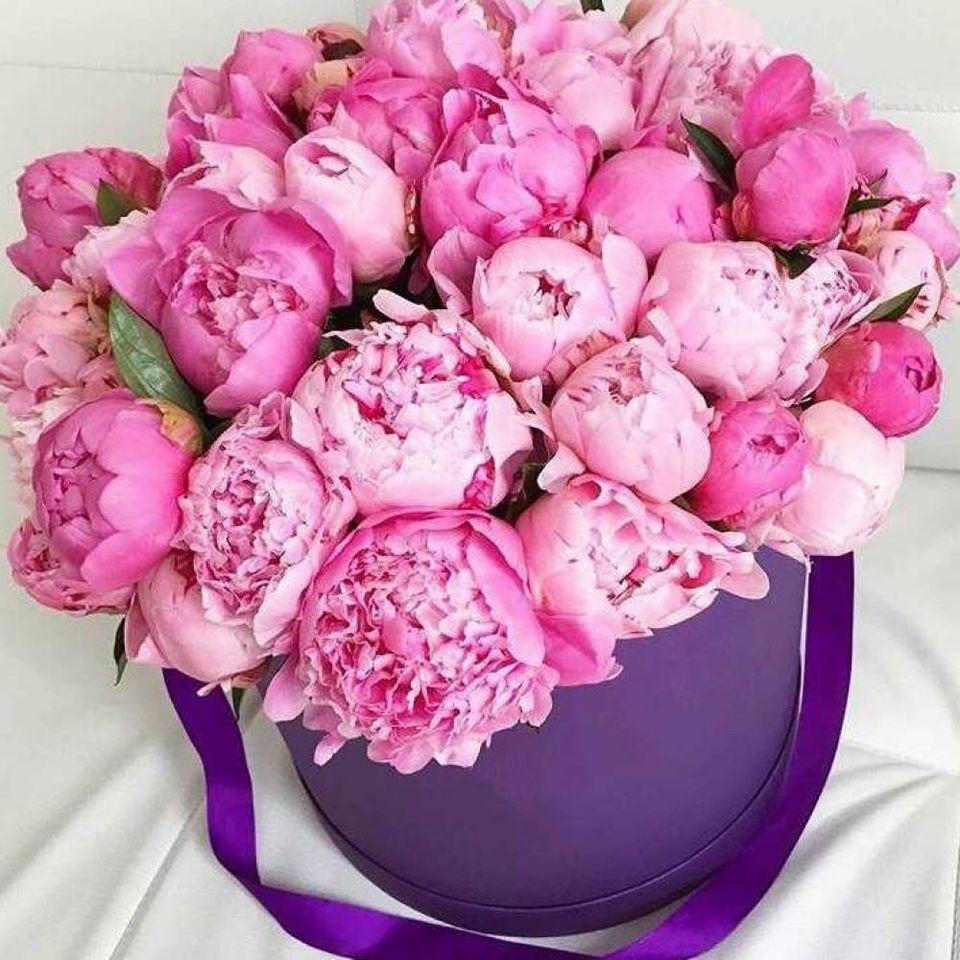 Букеты цветов пионы картинки красивые