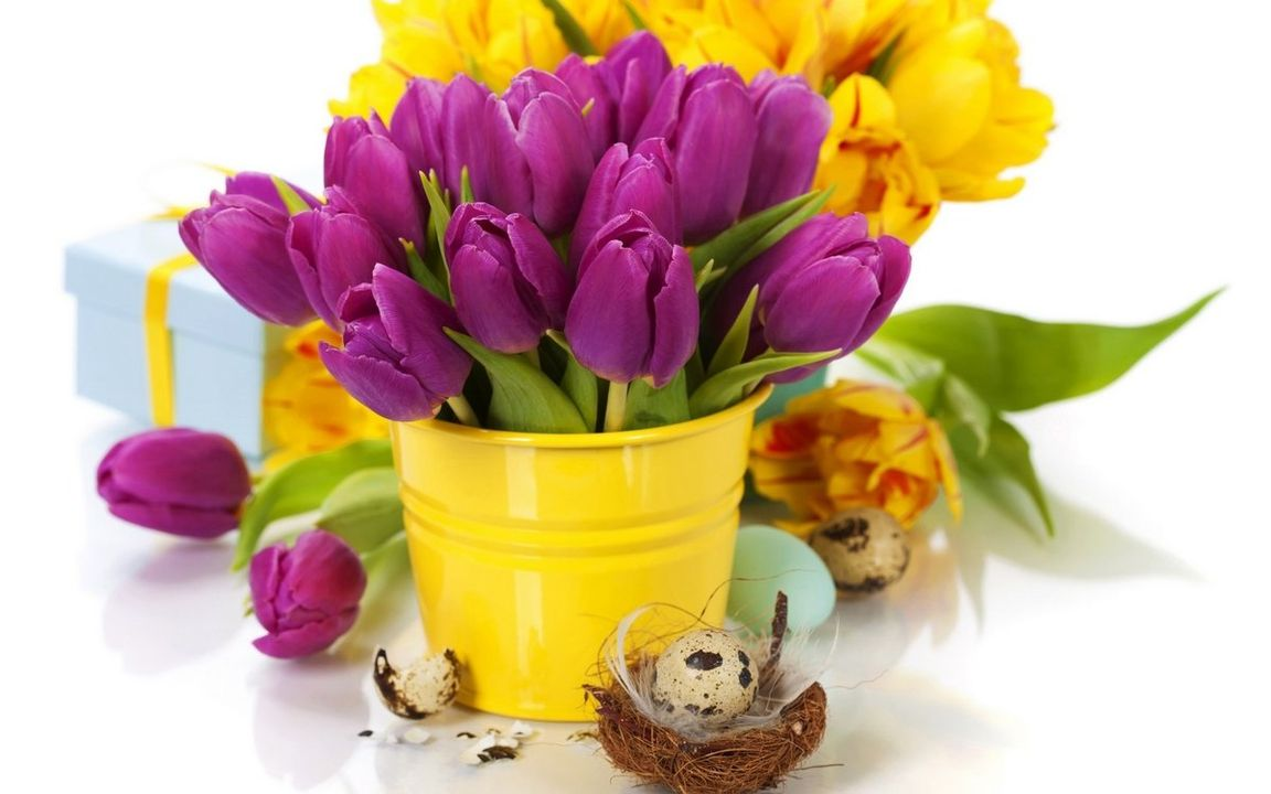 Ссылку открытку, картинка с тюльпанами на рабочий стол