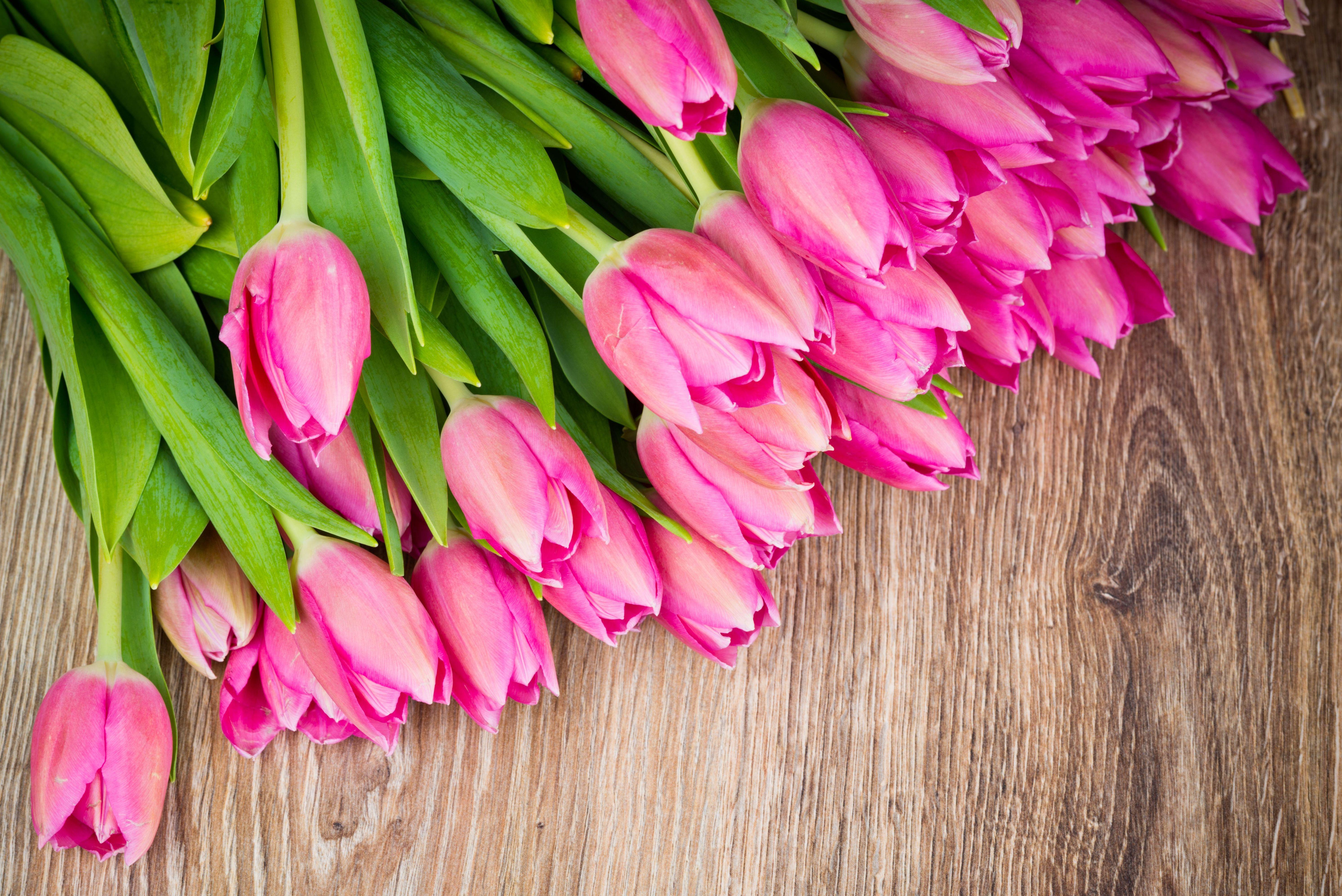 картинки весна 8 марта на рабочий стол гладиолус монтбреция