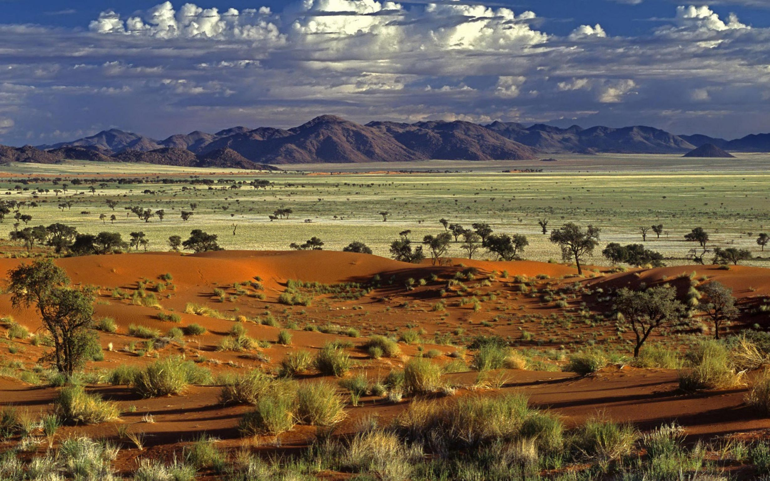 Фото природы в африке