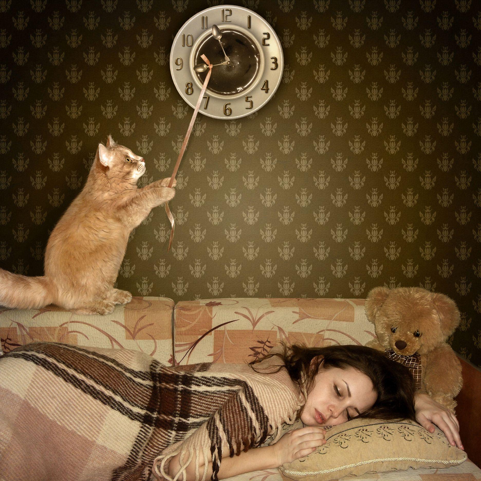 прикольные картинки со спящими для