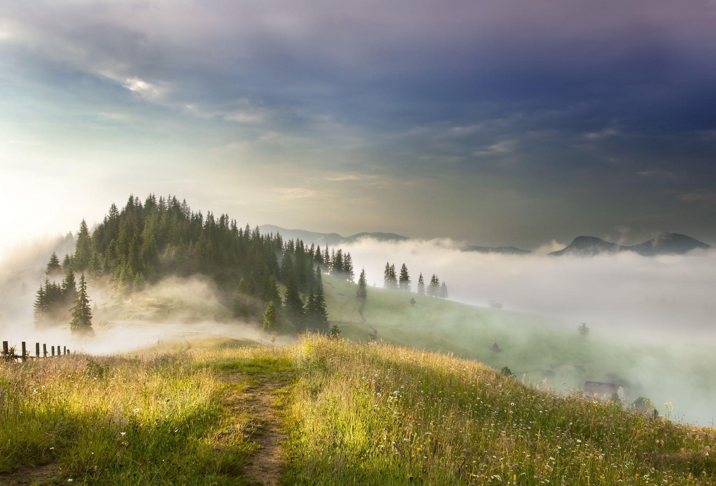 Картинки пейзажи в тумане