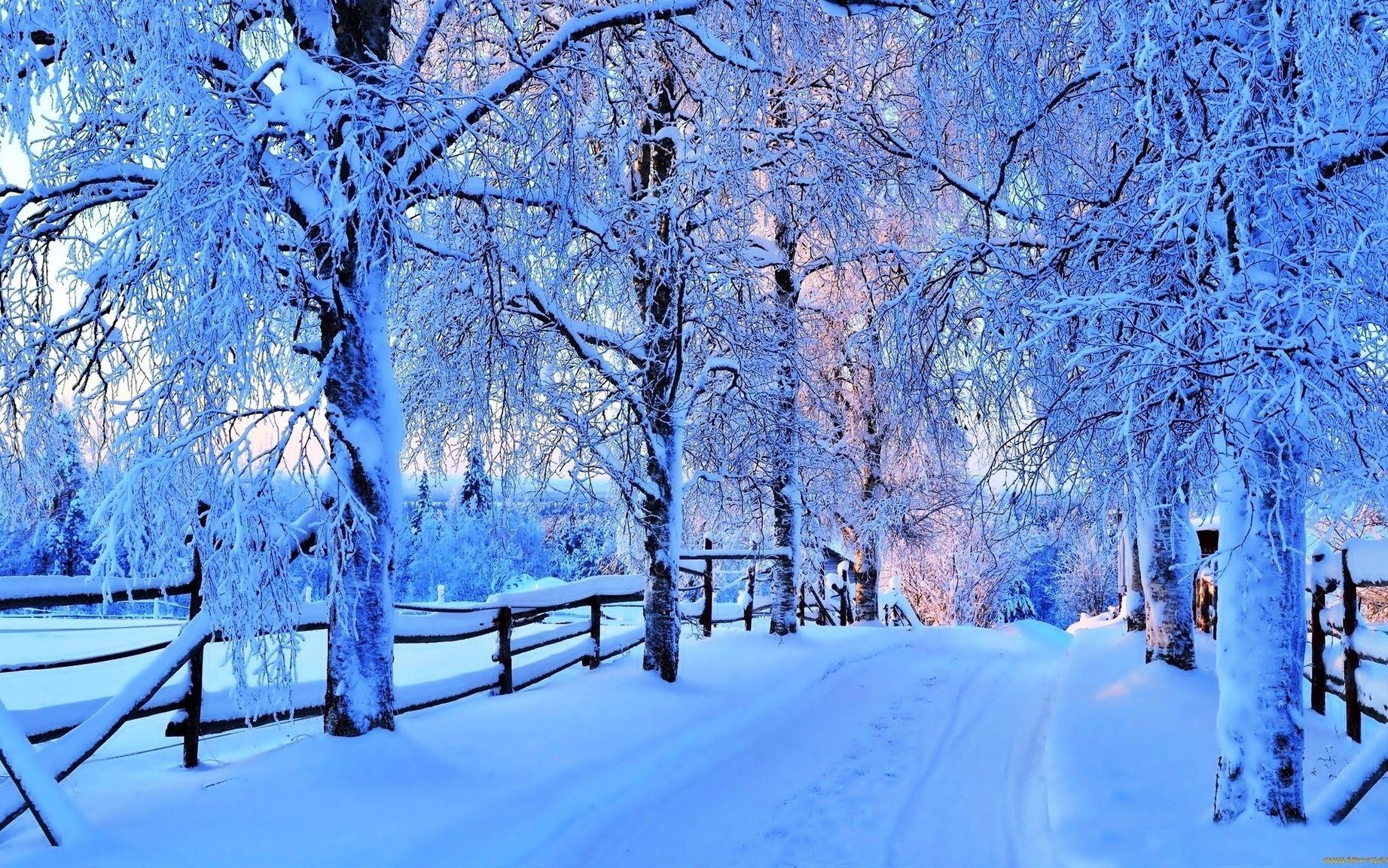 Картинки для заставки на планшет зима