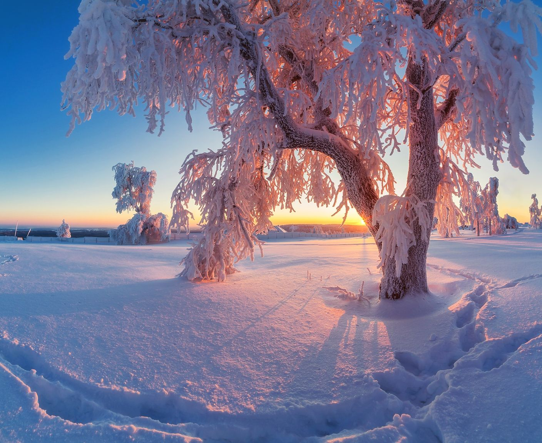 если фотографии русской зимы углу