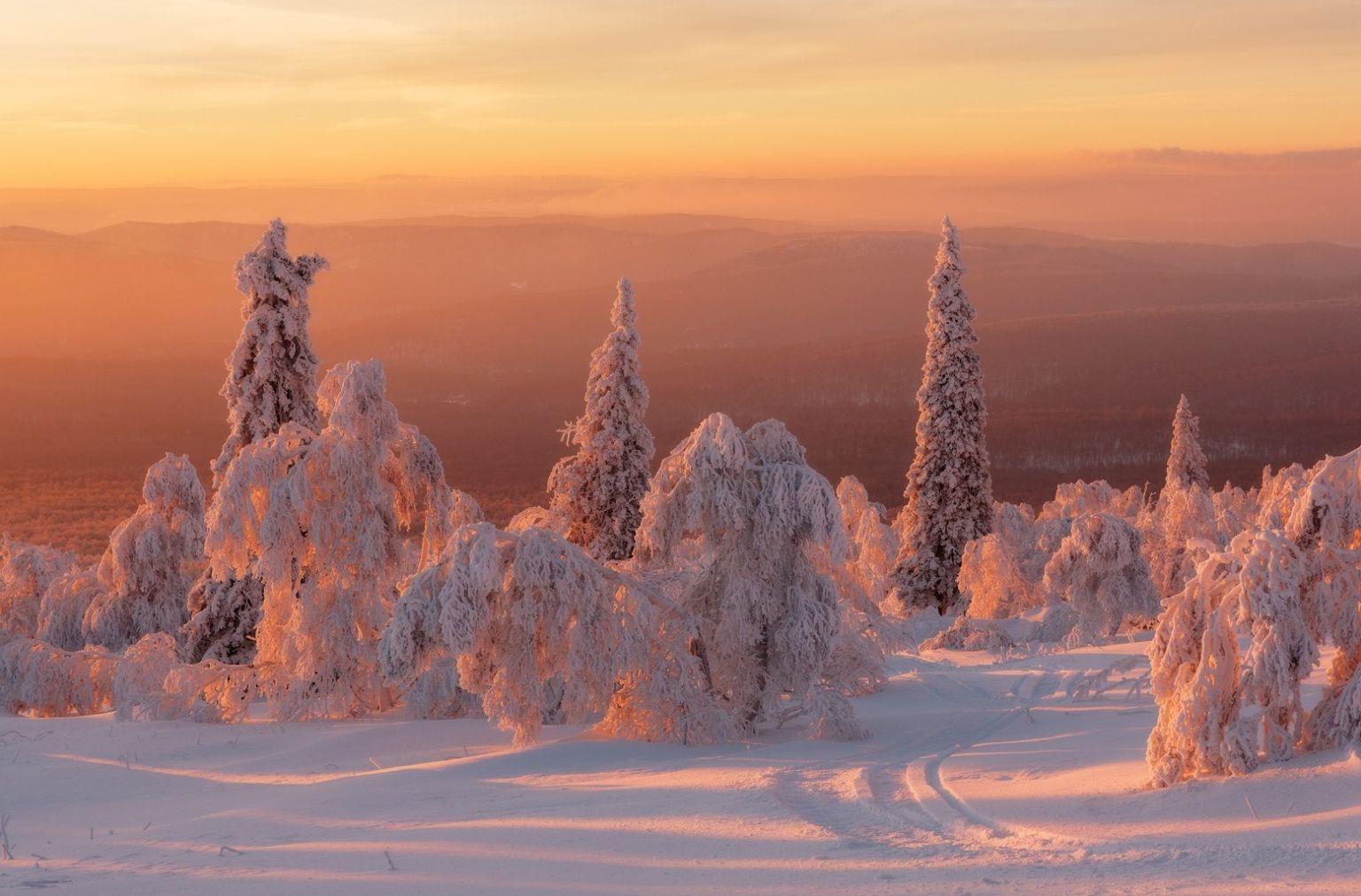 тех русская зима красивые картинки ней