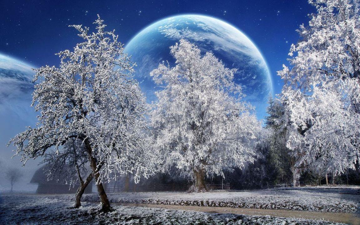Яркая зимняя картинка