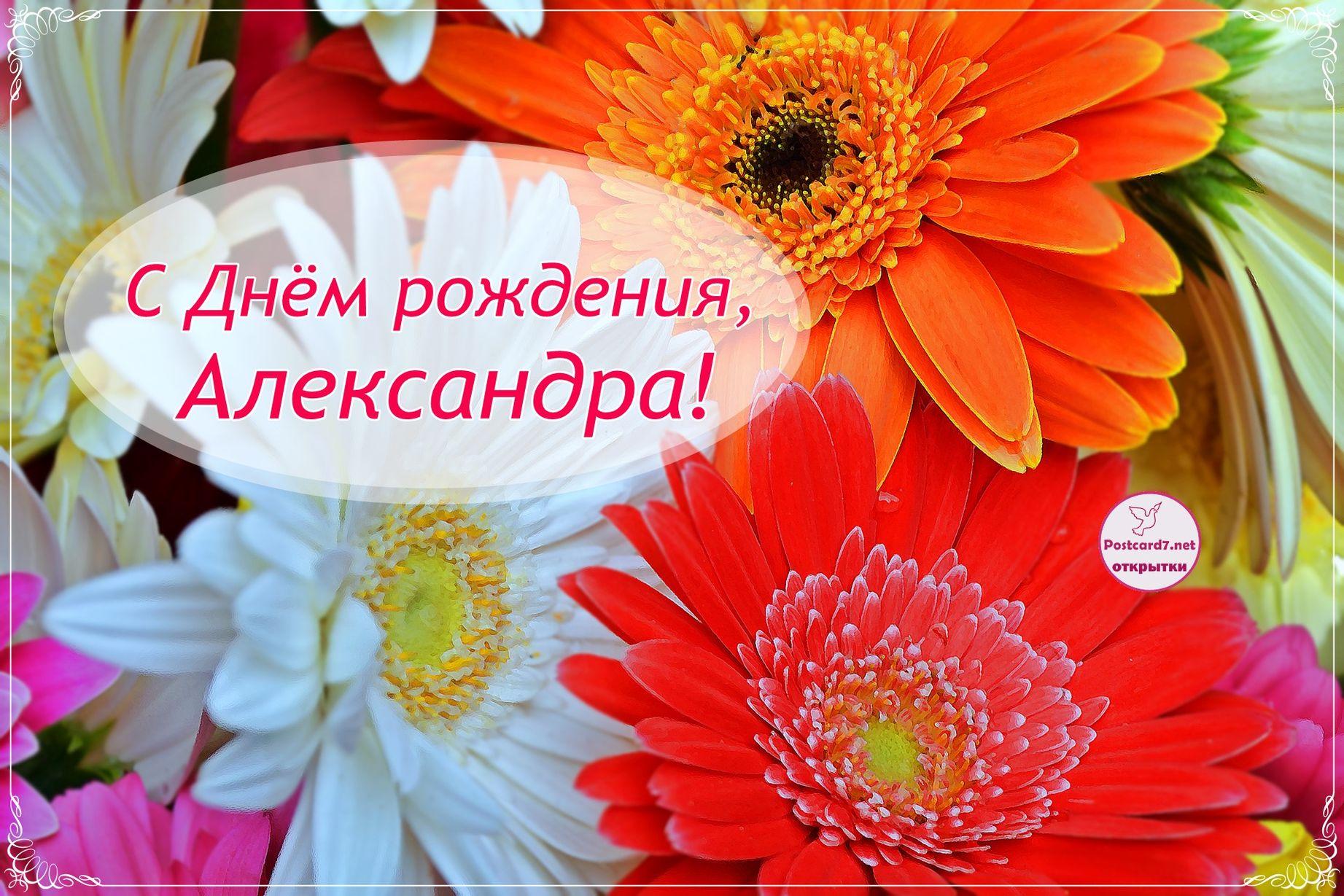 Поздравление с днем рождения для девочки сашеньки