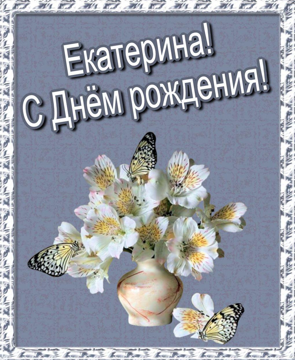 Поздравления с днем рождения екатерина смешные