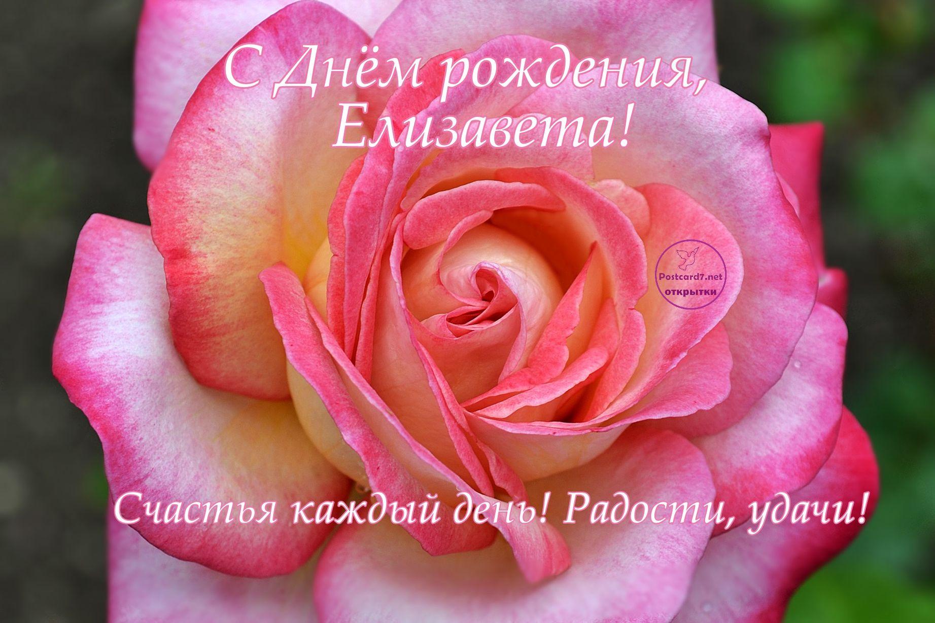 поздравления елизавете с днем рождения красивые картинки точно они застрахованы