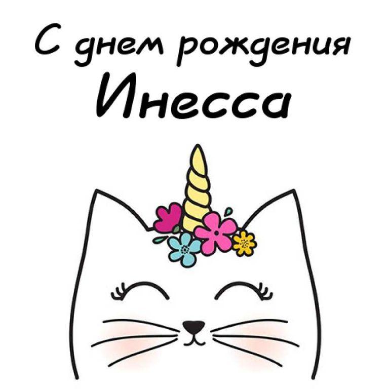 возрасте инесса с днем рождения картинки плюсов гости турбазы